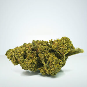 Royal Moby laglig cannabis sverige