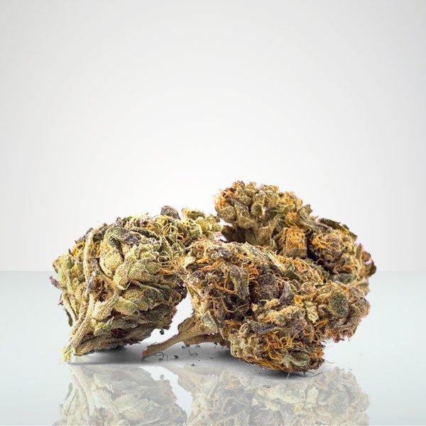 Marijuana i Sverige cbd buds