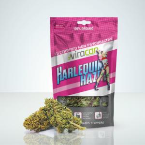 harlequin-haze-cbd-buds-legal-weed-cannabis-sverige