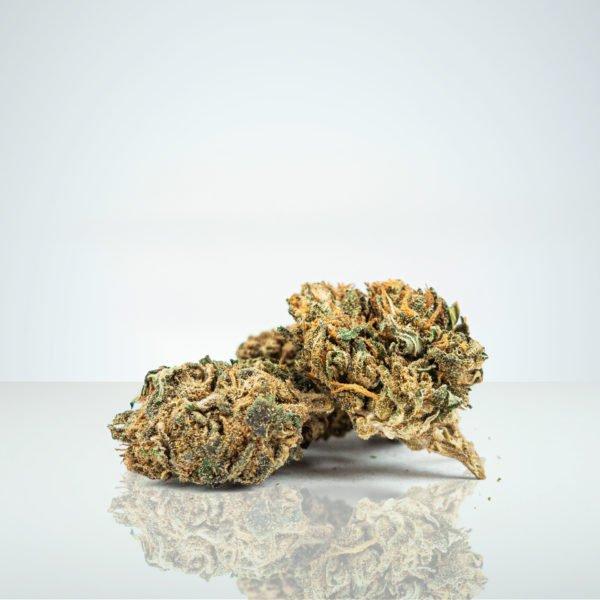 Watermelon OG CBD Buds Cannabis