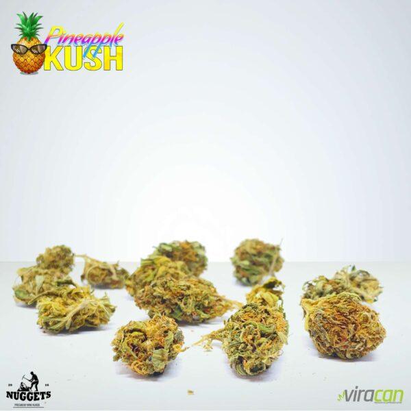 Pineapple Kush Nuggets