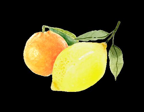 Harmony CBD Spray - Ingredienser - Citron och Lime