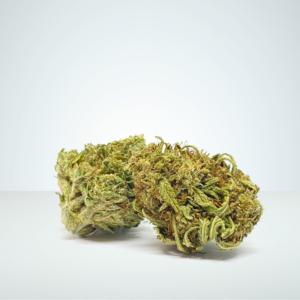CBG cannabis buds